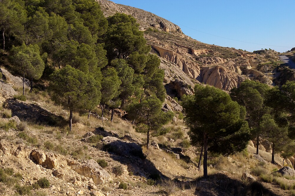 Mountainside behind my house in Mula by Johninmula