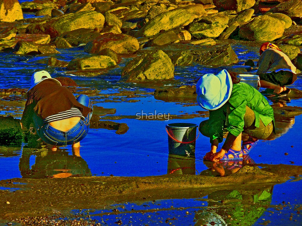 Picking Pippies 3 by shaley