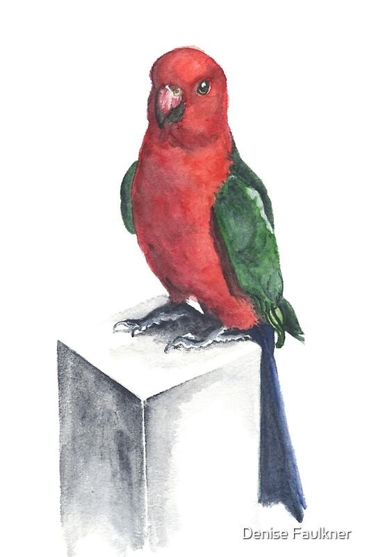 King Parrot Posters By Denise Faulkner Redbubble