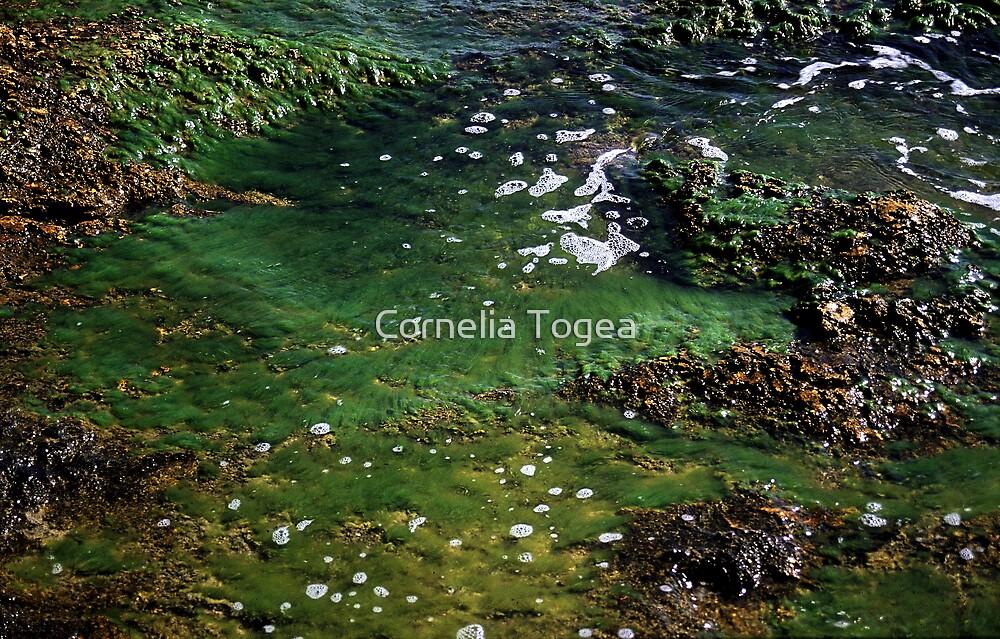 sea by Cornelia Togea