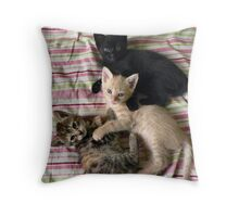 Three little kittens... Throw Pillow