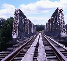 Trestle Bridge by Peter Murphy