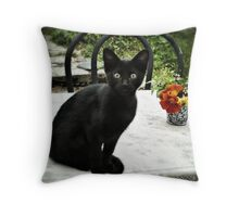 The cat and the flowers... Throw Pillow