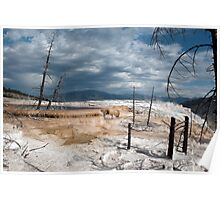Yellowstone hot land. Landscape picture in Yellowstone National Park. Poster