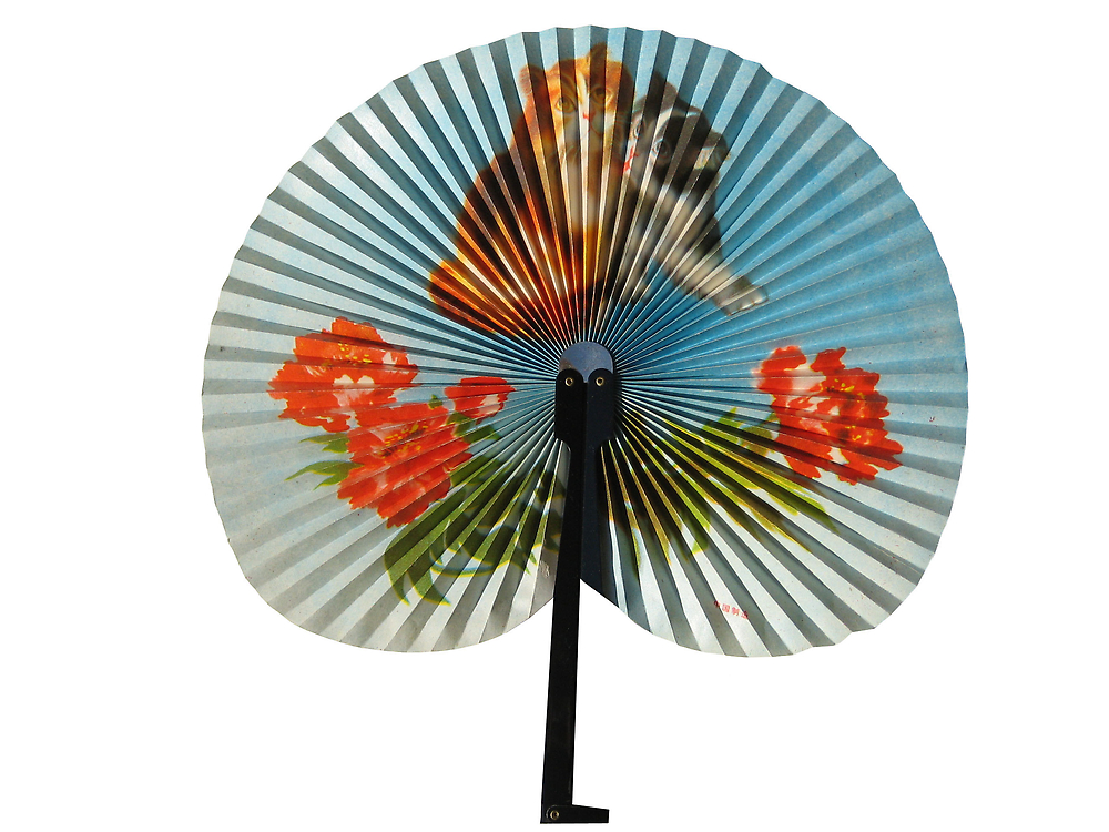 A beautiful Chinese fan  by dolphin