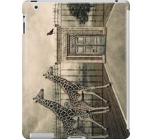 Displaced iPad Case/Skin