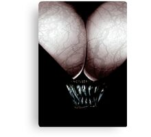 cleave Canvas Print