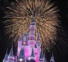 Disney Castle Fireworks Fire Works  by notheothereye