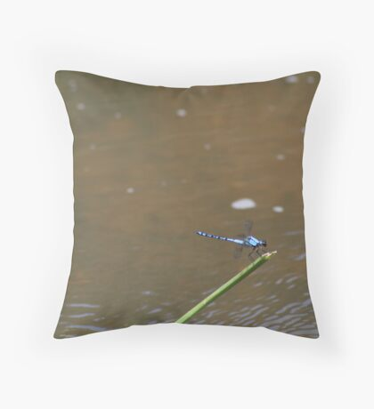 Life on, in and above the Wollondilly River Throw Pillow