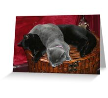 REDREAMING KITTY DREAMING Greeting Card
