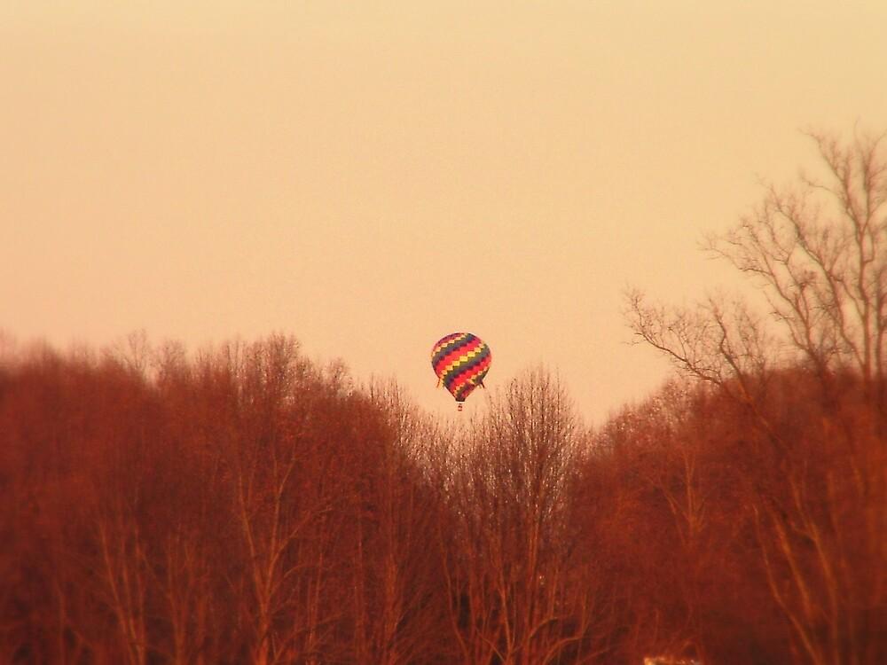 Hot Air Balloon by Ferguson