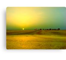 Desert sunrise, Failaka island Kuwait Canvas Print