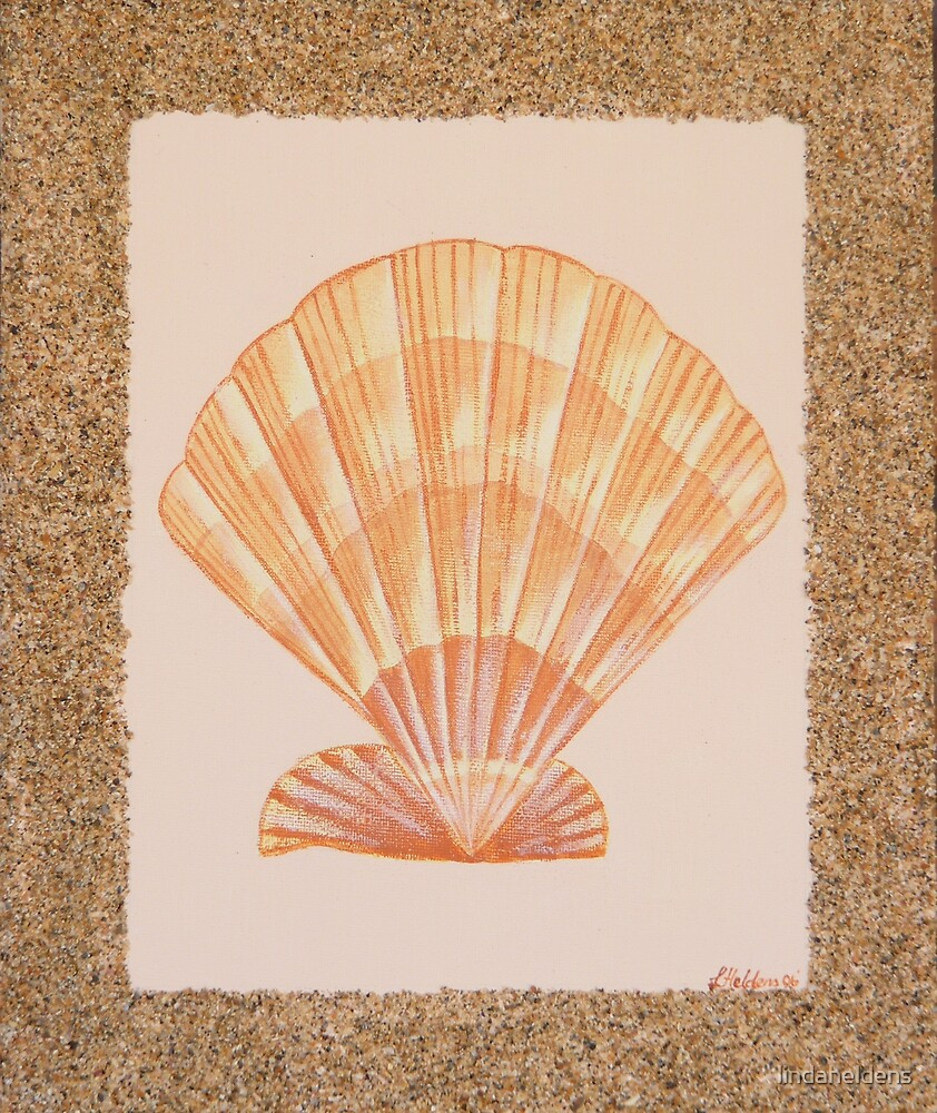 The Shells 2 by lindaheldens