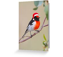 Red-capped robin Santa's helper Greeting Card