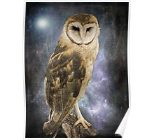 Wise Old Owl - Image Art Poster