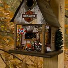 "Fall At The Biker Bird Hotel by Arthur ""Butch"" Petty"