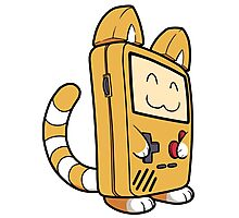 Game Boy Cat Photographic Print