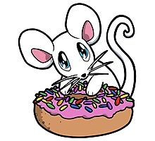 Mouse with a Donut Photographic Print