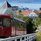 Wellington cable car by Mike Warman
