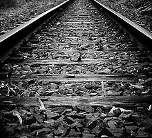 on the right track by MrTim