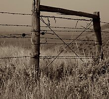 No Entry by ldredge