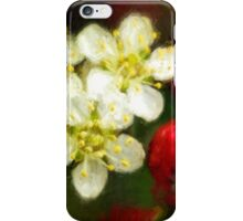 Pyracantha contrasts iPhone Case/Skin