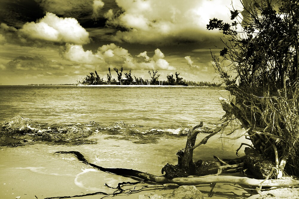 Sea and Sky by Martyn Starkey