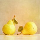 Pear Dialogue by Colleen Farrell