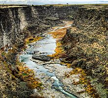 Snake River Canyon by Brent Olson