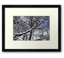 Wrapped in Winter's Cold Embrace Framed Print