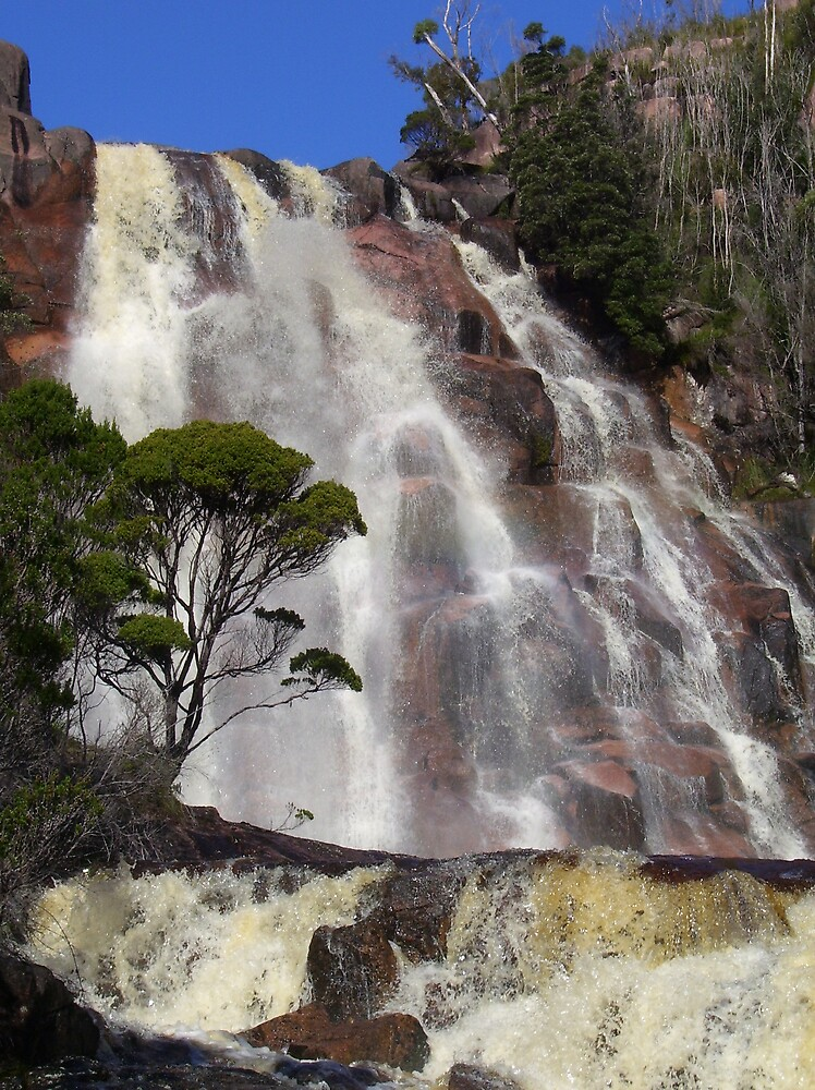 Heemskirk Falls, Zeehan, west coast of Tasmania by gaylene