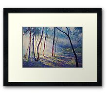 Ironbark Country Morning Framed Print