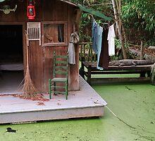 Swamp by abramowitzphoto