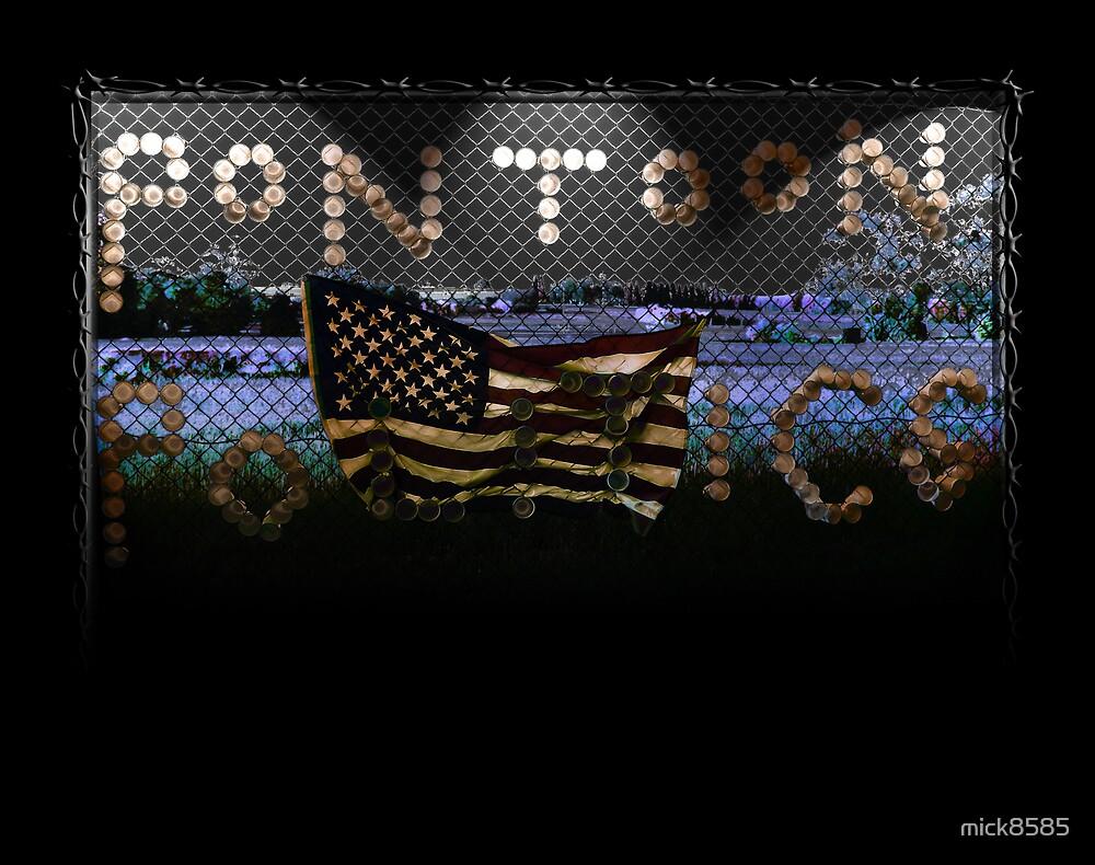 pontoon politics by mick8585