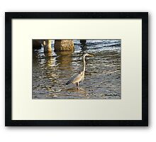 Just Watching the Sun Go Down Framed Print