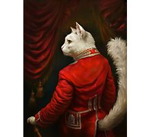 The Hermitage Court Chamber Herald Cat Edited version Photographic Print