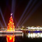 Floating Christmas Tree by James Collier