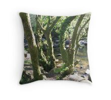by the river Dart Throw Pillow