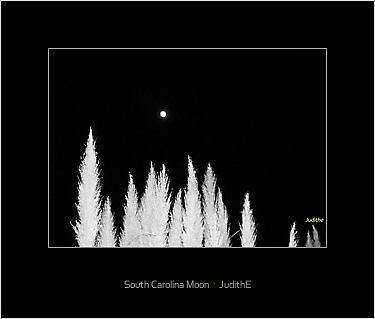 """Framed ' South Carolina Moon"""" by JudithE"""