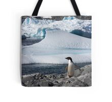 "Adelie Penguin  ~  ""and this is my backyard"" Tote Bag"