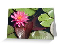 Pink Lilly Greeting Card