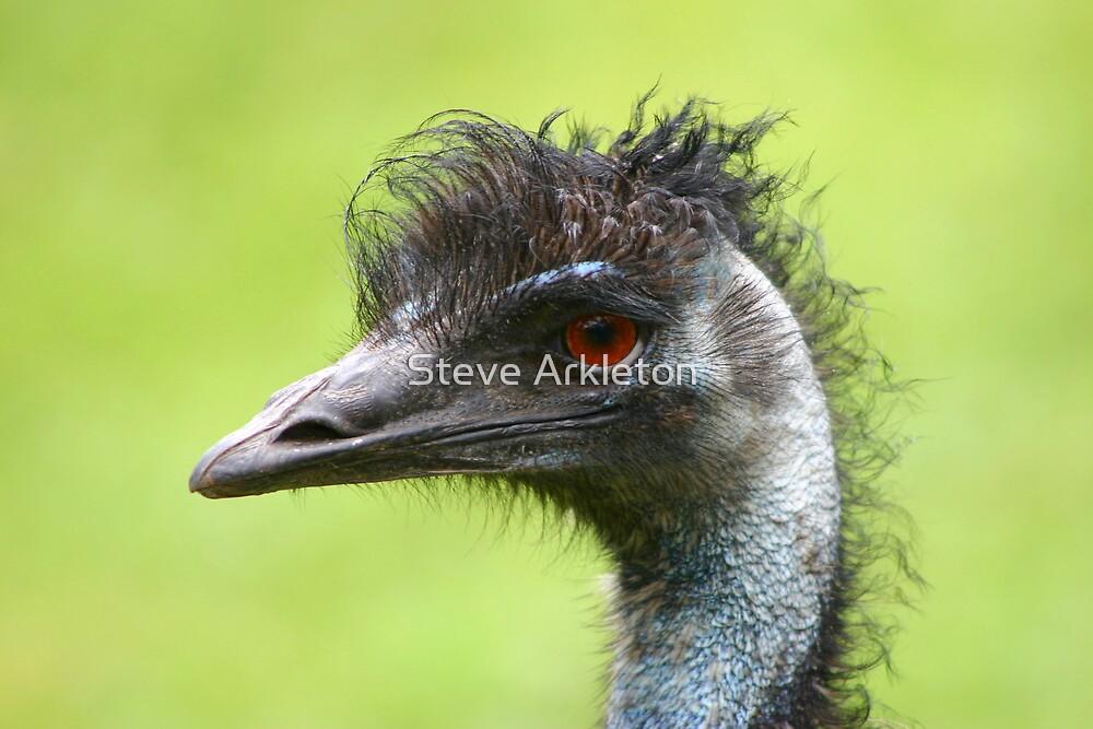 Emu by Steve Arkleton