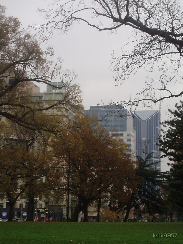 Melbourne buildings from Exhiibition gardens  by lettie1957