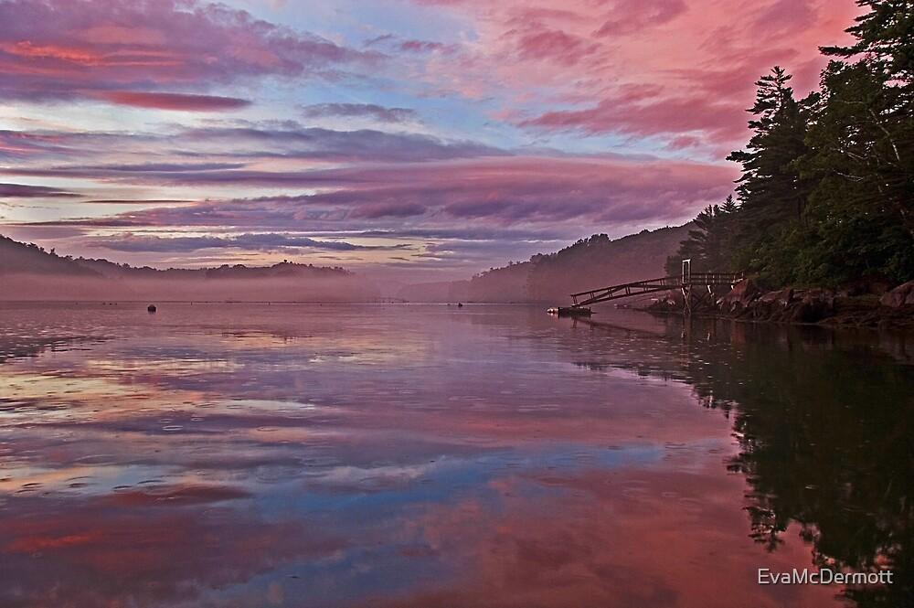 Magic Sky by EvaMcDermott