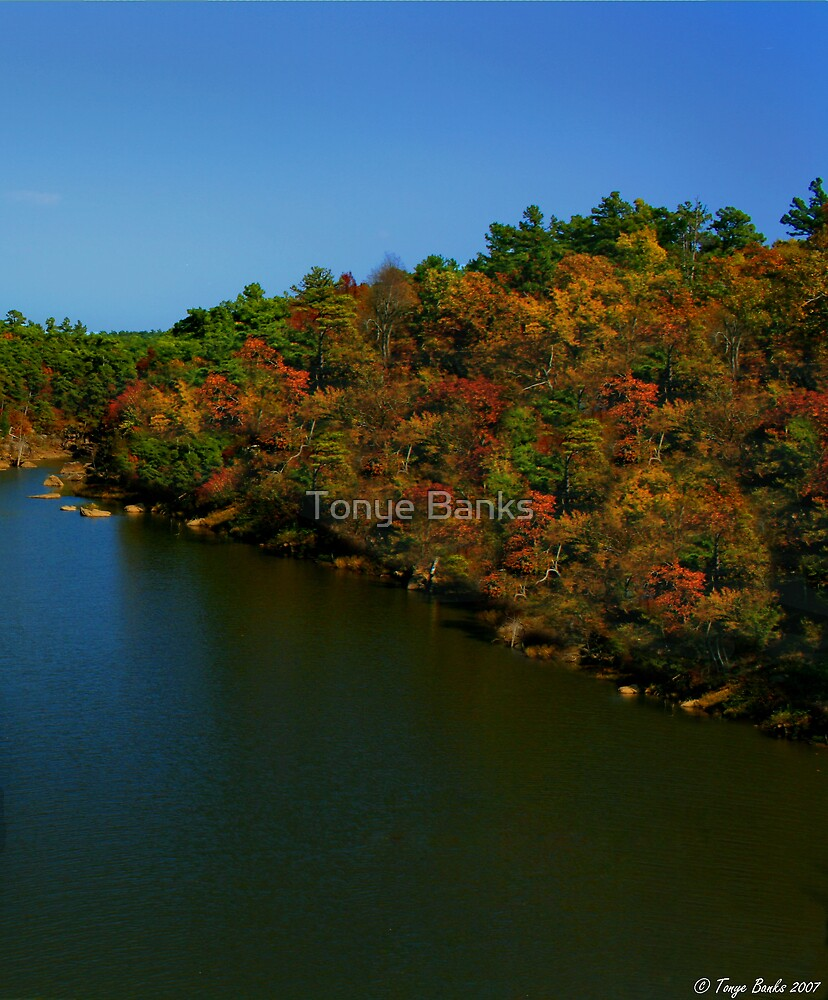 Autumns River of Life by Tonye Banks