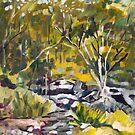Mt Cootha Creek Stage 2 by Paul  Milburn