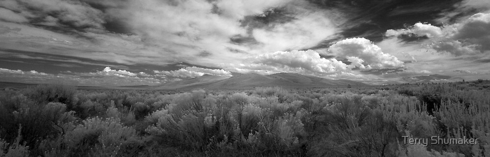High Desert One by Terry Shumaker