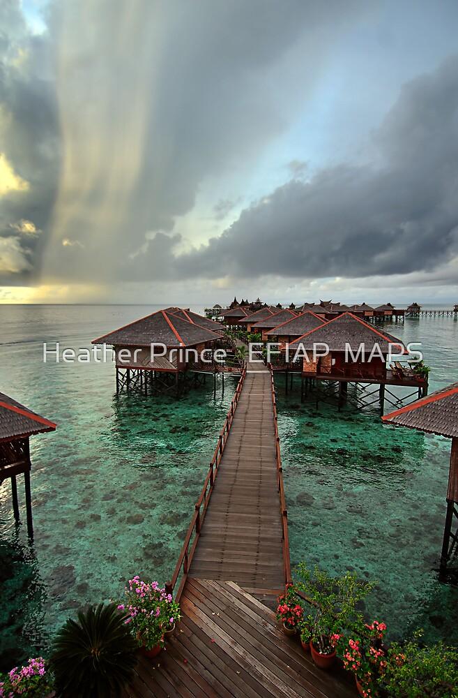 Early Morning Rainstorm on Mabul Island  by Heather Prince
