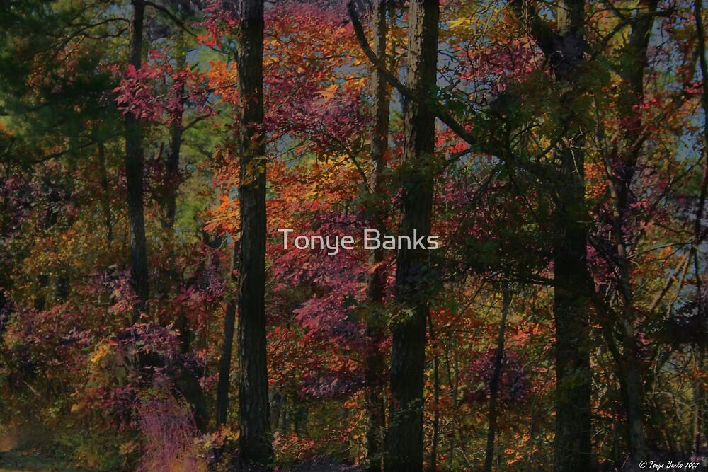 Fairykist Trees by Tonye Banks