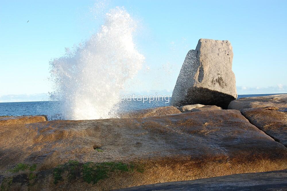 Blowhole, Bicheno, Tas. by patapping